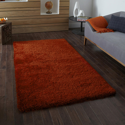 Artique Burnt Orange Rug