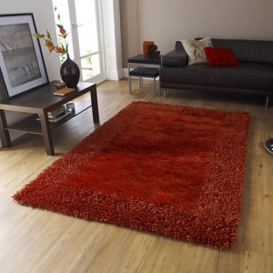 Sabby Extra Burnt Orange Rug